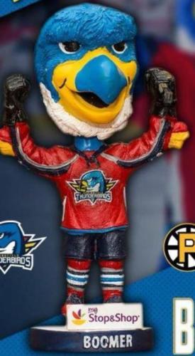 2017-2018 Thunderbirds