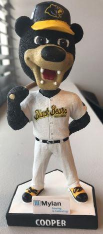 2017 West Virginia Black Bears (SS)