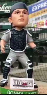 2018 Pulaski Yankees (R)
